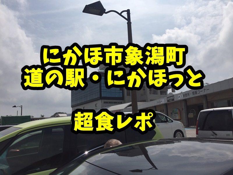 秋田 象潟 道の駅 ねむの丘 にかほっと